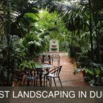 The Top 5 Providers for the Best Landscaping in Dubai